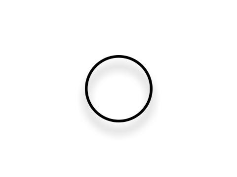 1594 O-Ring Image